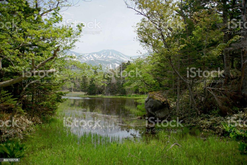 知床の湖 ストックフォト