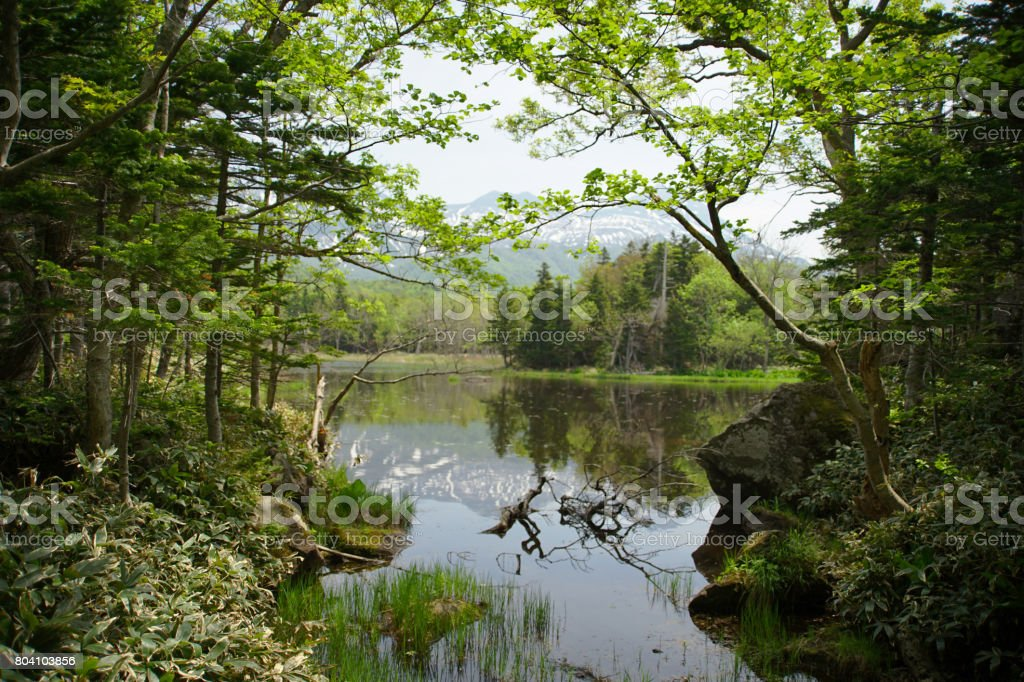 Shiretoko lake stock photo