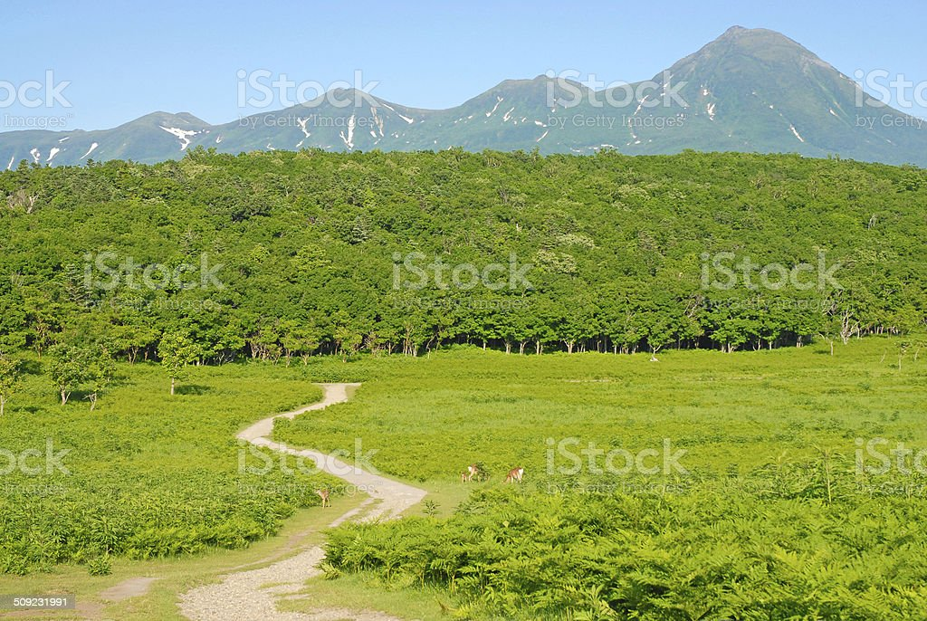 Shiretoko National Park, Hokkaido Japan stock photo