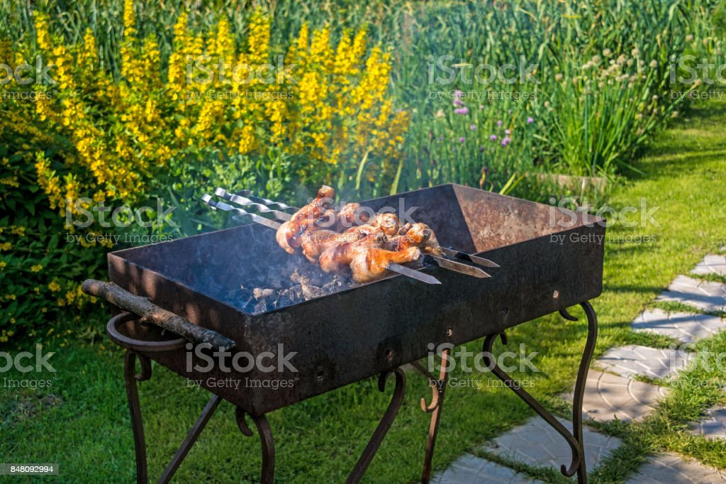 Shish kebab from chicken stock photo