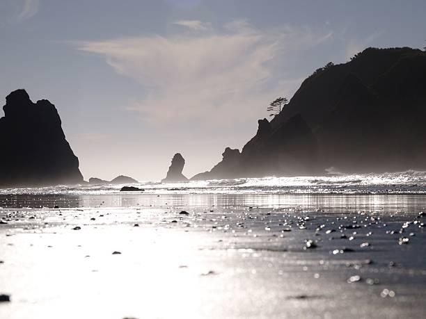 ShiShi-Strand – Foto