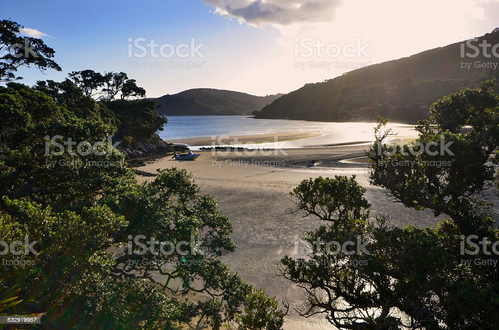 Shoal Bay, Tryphena harbour, Great Barrier Island New Zealand stock photo