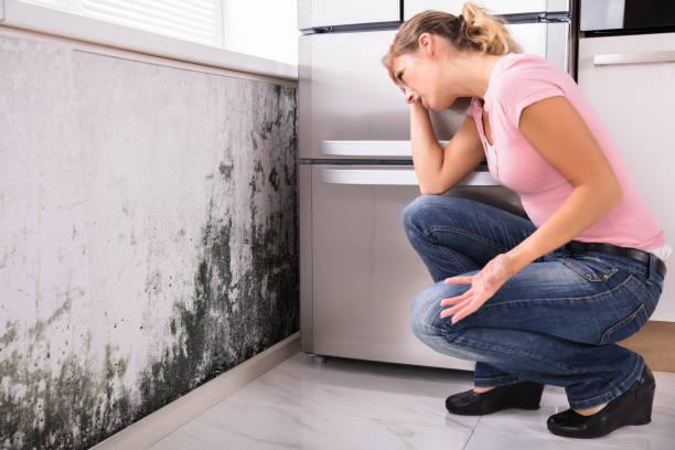 geschokt vrouw kijkt schimmel op muur - schimmel stockfoto's en -beelden