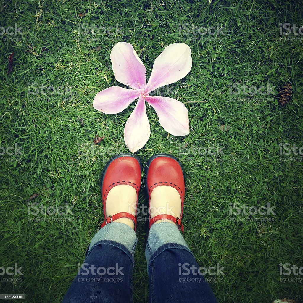 Shoes and a flower royalty-free stock photo