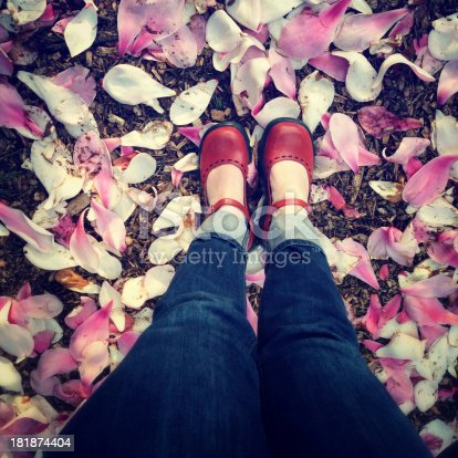 istock Shoes and flower petals 181874404