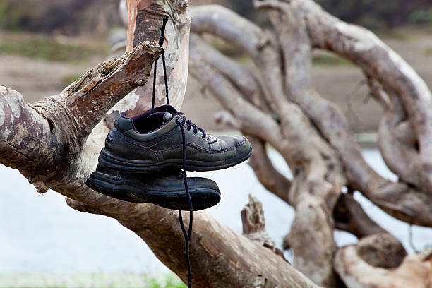 Shoes left hanging on a tree branch stock photo