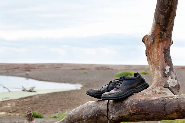 Shoes left on a tree branch stock photo