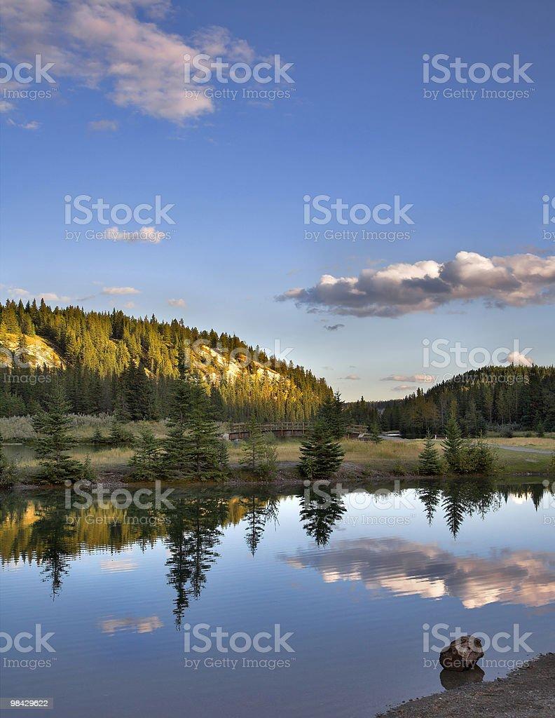 Shone reflections. royalty-free stock photo