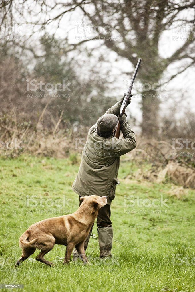 Shooting game birds, with dog royalty-free stock photo