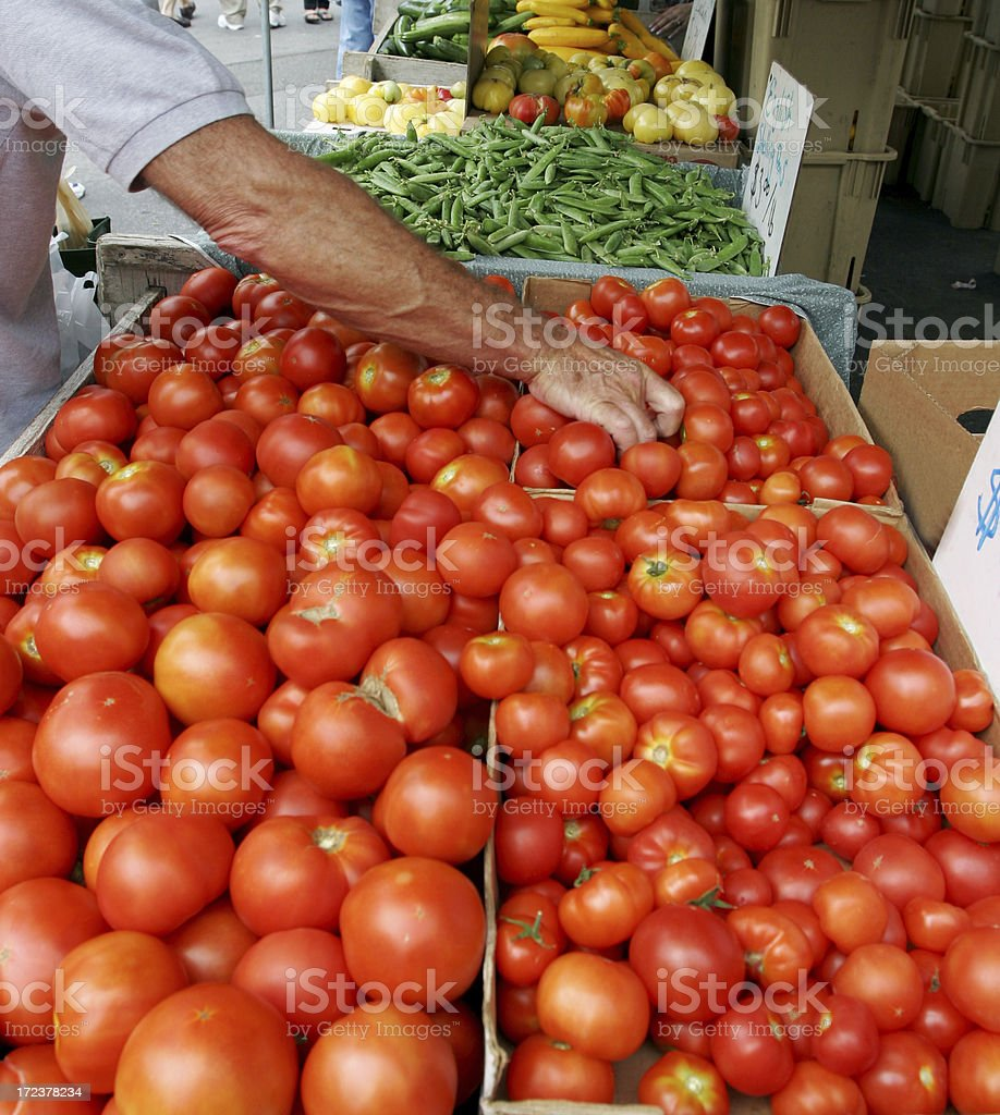 Shoppers Tomatoes Vegetable Market New York City royalty-free stock photo