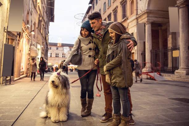 shopping bei nacht beschäftigt und dekorierten stadtstraße in weihnachtsmärkte - hundeplätze stock-fotos und bilder