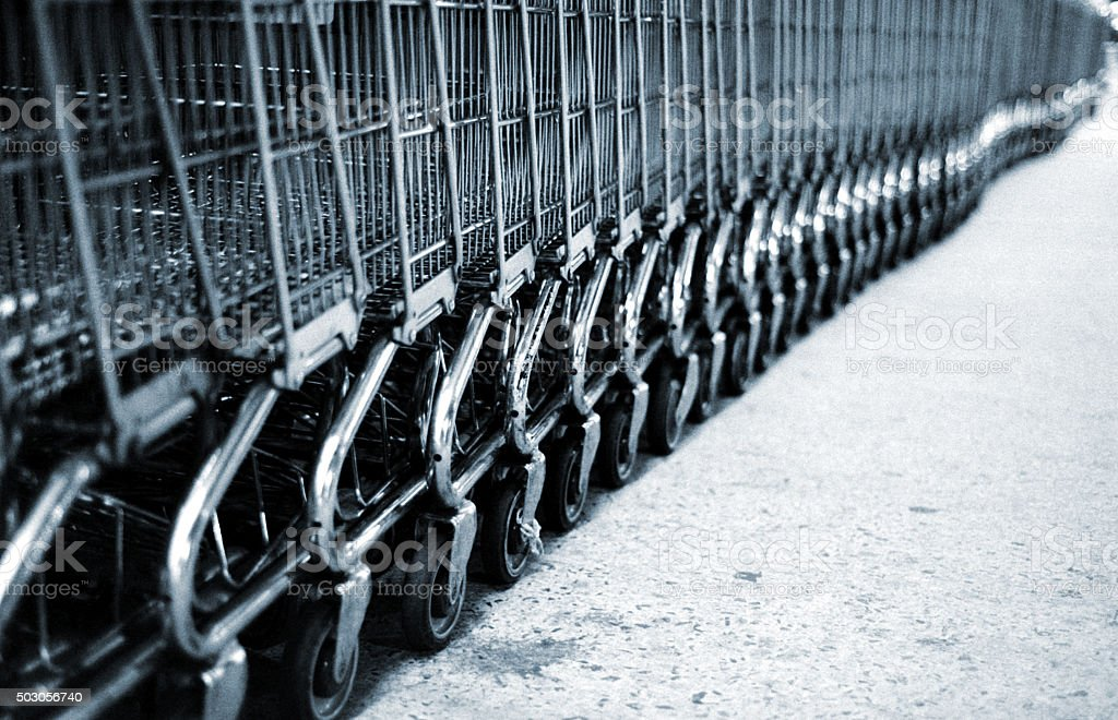 Shopping Carts in a Row Black and White stock photo