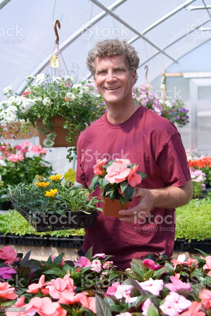 Shopping for Garden Annuals royalty-free stock photo