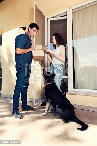 510998733 istock photo Shopping Home Delivery Service Courier Dog 1069664802