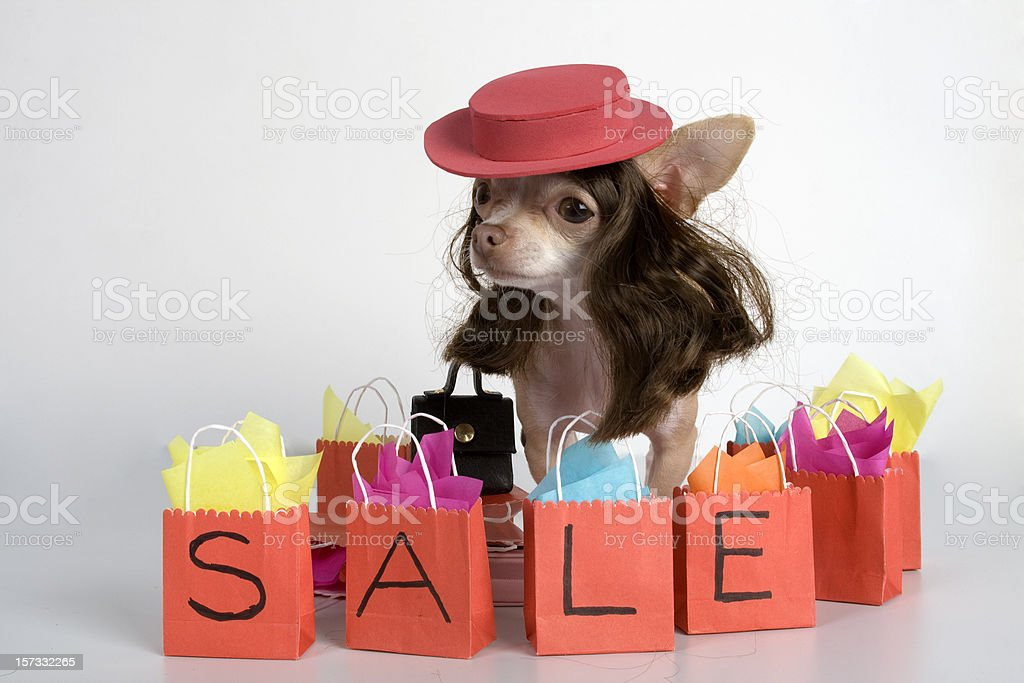 shopping on sale royalty-free stock photo