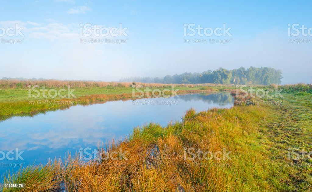 Shore of a foggy lake at sunrise in autumn stock photo