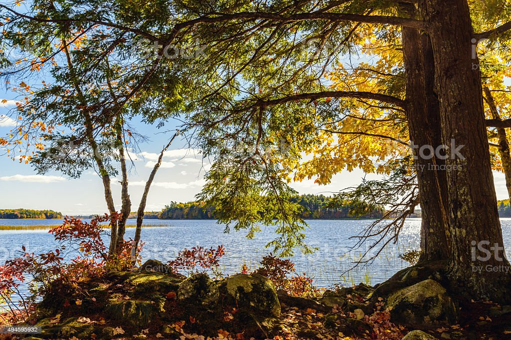Shore of Kejimkujik lake in fall from Jeremy Bay Campground stock photo