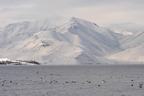 해안에 Van 호수, 앗샤르키야 하띤 스톡 사진