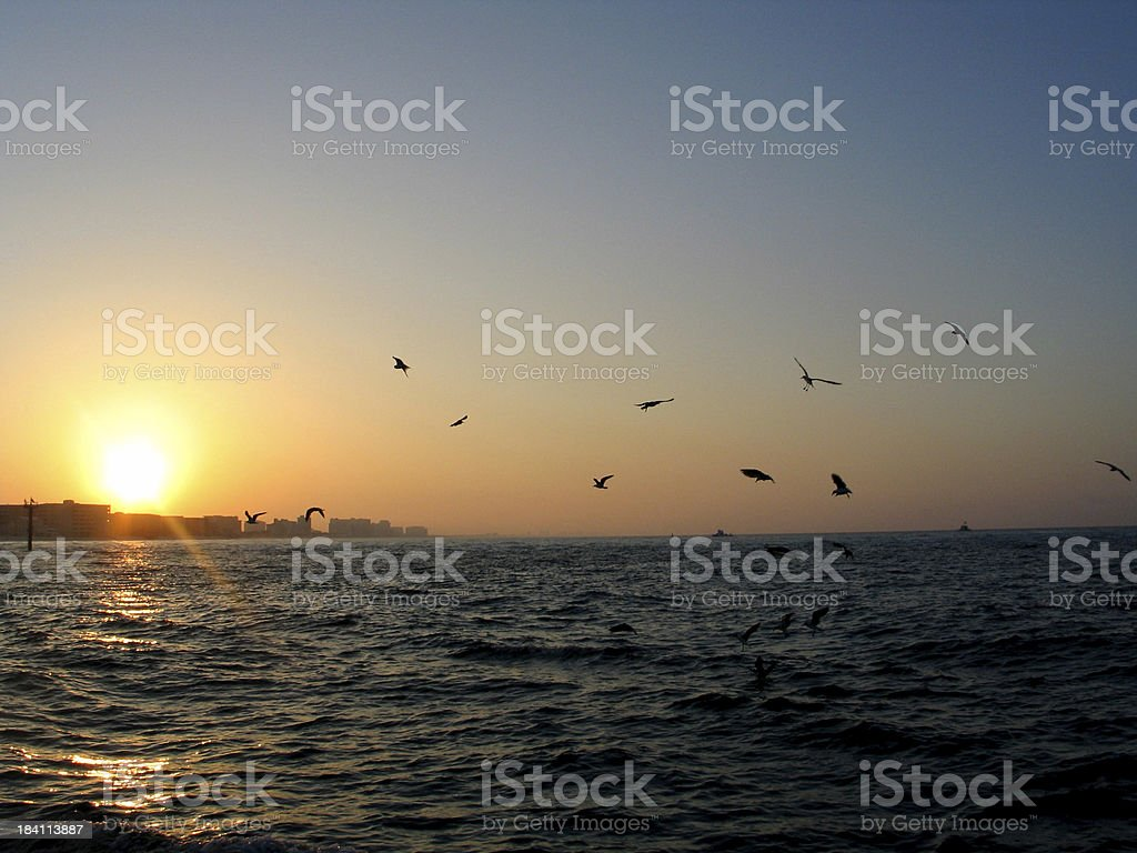 Shore Sunrise stock photo