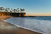 Shore with palm trees, rocks, blue sky and ocean in sunset time. Soft sunlight falling on beach. Beautiful landscape in Laguna Beach, California, USA.