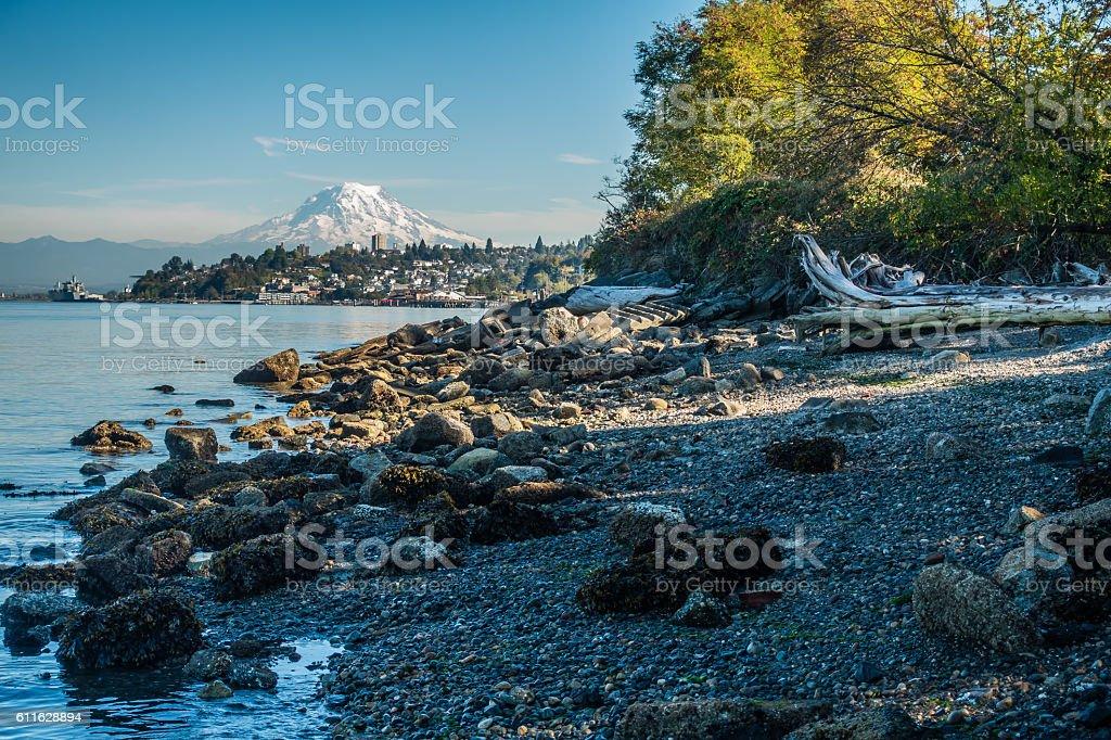 Shoreline And Rainier 7 stock photo