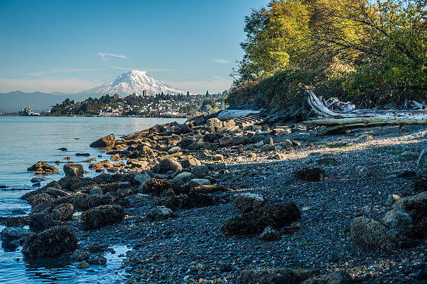 Shoreline And Rainier 7 A view of Mount Rainier from Ruston, Washington. tacoma stock pictures, royalty-free photos & images
