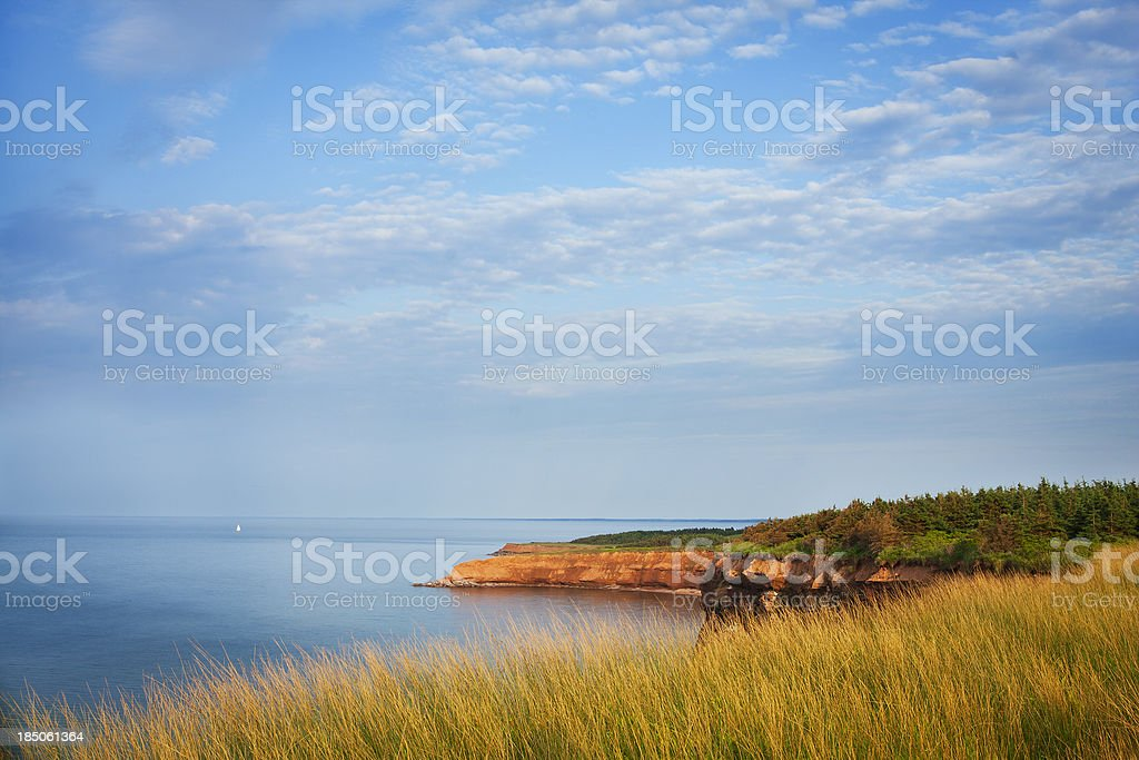 PEI Shoreline and Sailboat stock photo