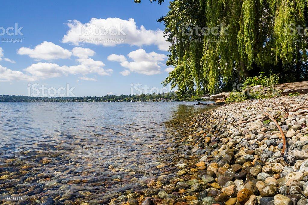 Shoreline of Lake Washington stock photo