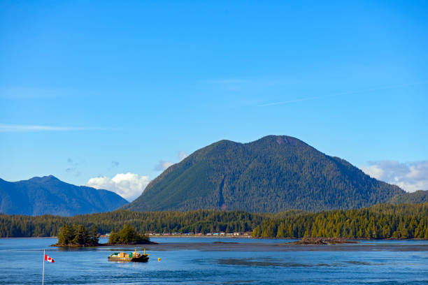 Shoreline of Meares Island and hill tops in Tofino, Vancouver Island stock photo