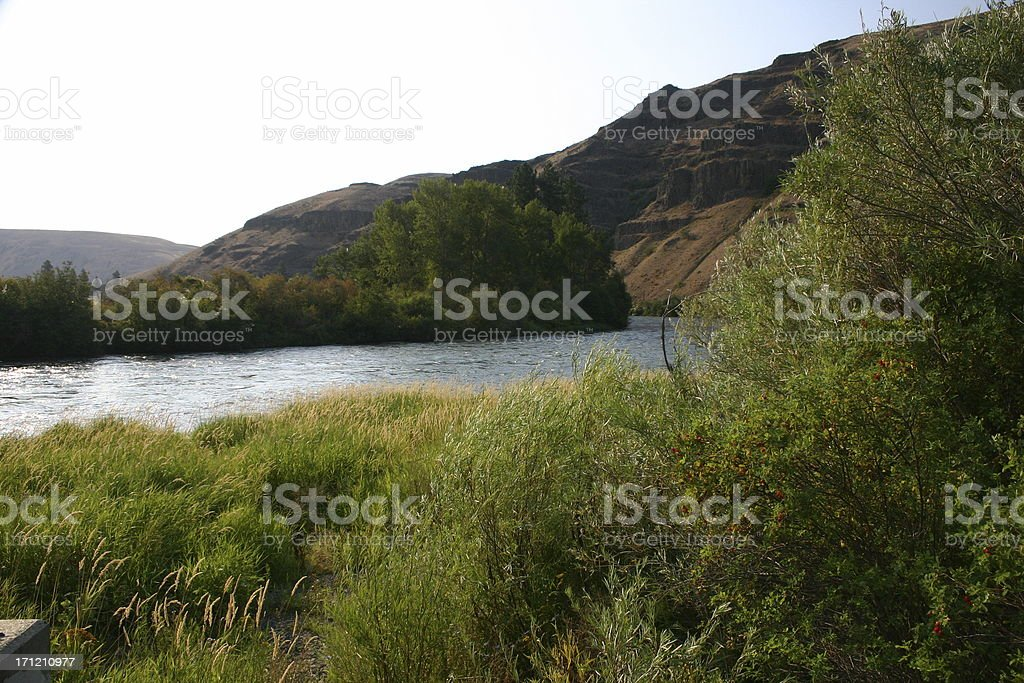 Shores of the Yakima River stock photo