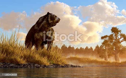 An unusual looking bear, the now extinct short faced bear, an animal of the last ice age, sits in the deep grass on the rocky shore of a prehistoric North American wetland. 3D Rendering.