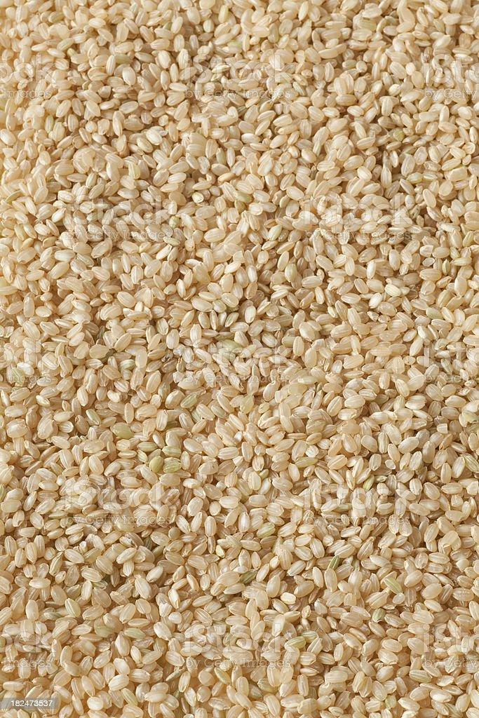 short grain brown rice royalty-free stock photo