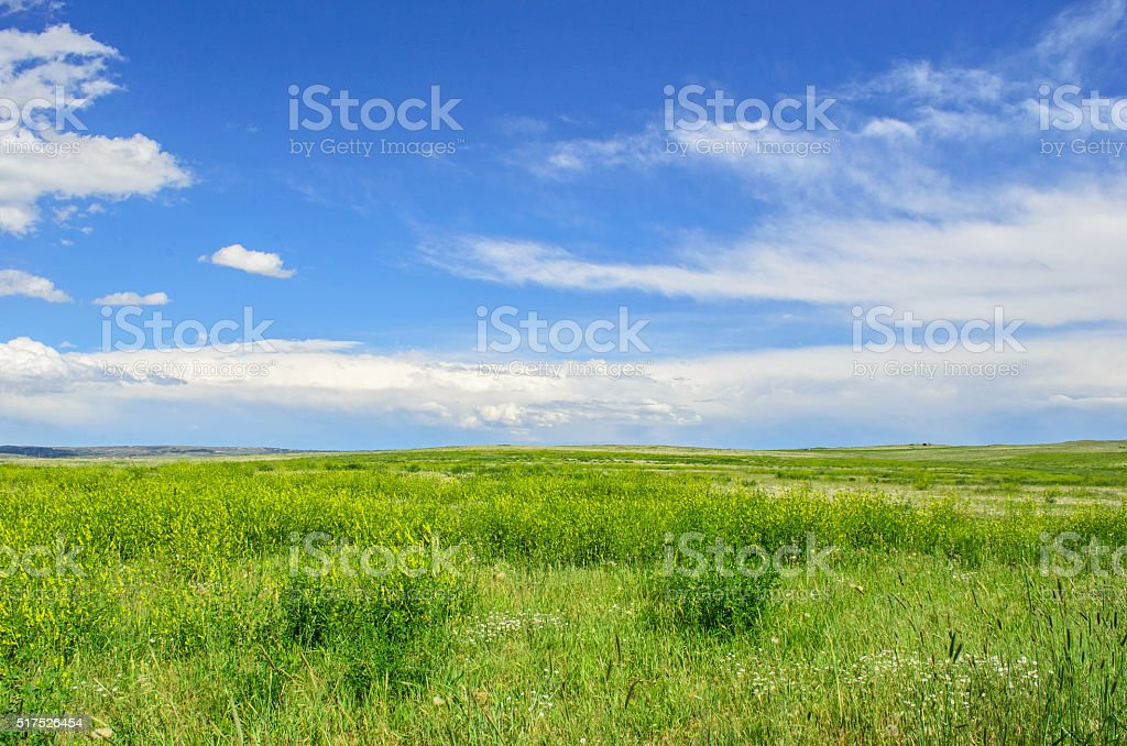Short Grass Prairie stock photo