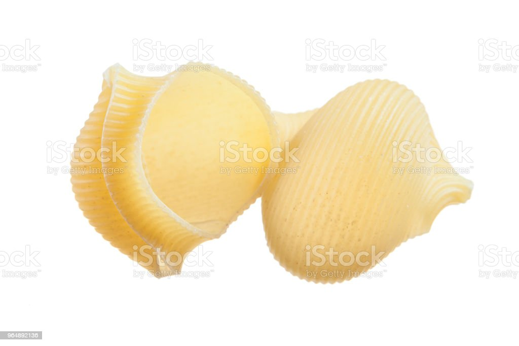 Short-cut pasta shells isolated on white royalty-free stock photo
