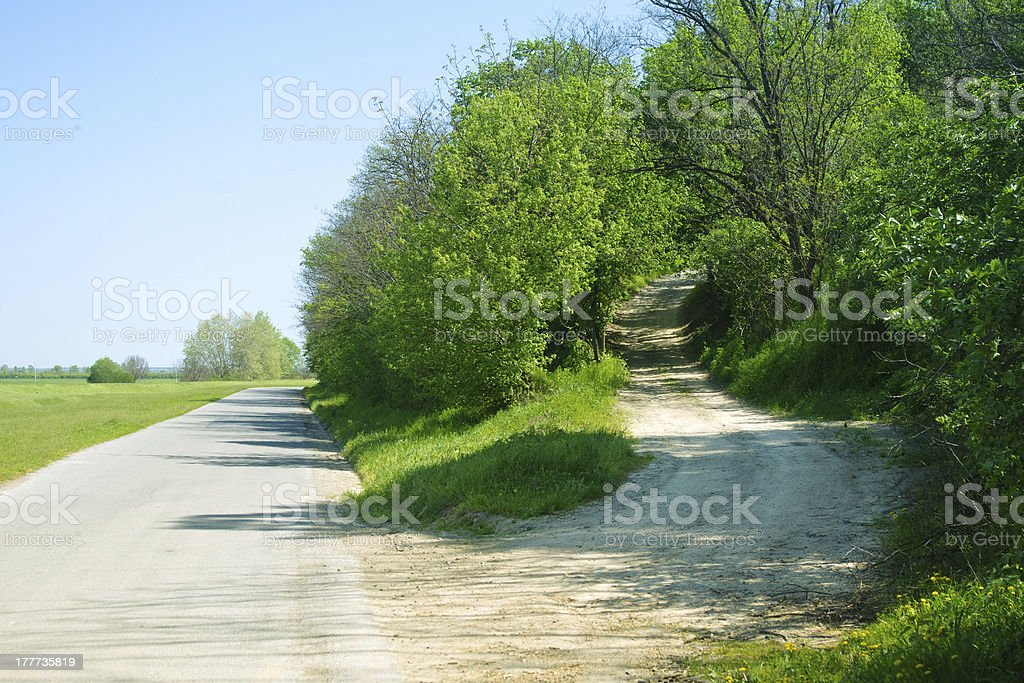 Shortcut through forest by the road royalty-free stock photo