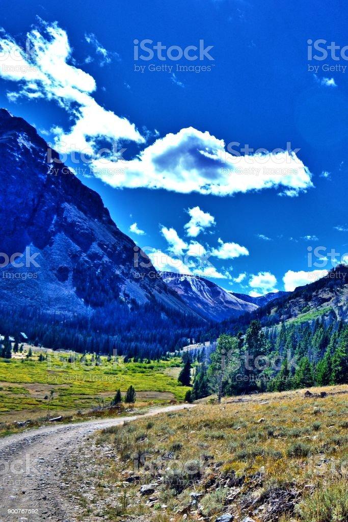 Shoshone National Forest stock photo