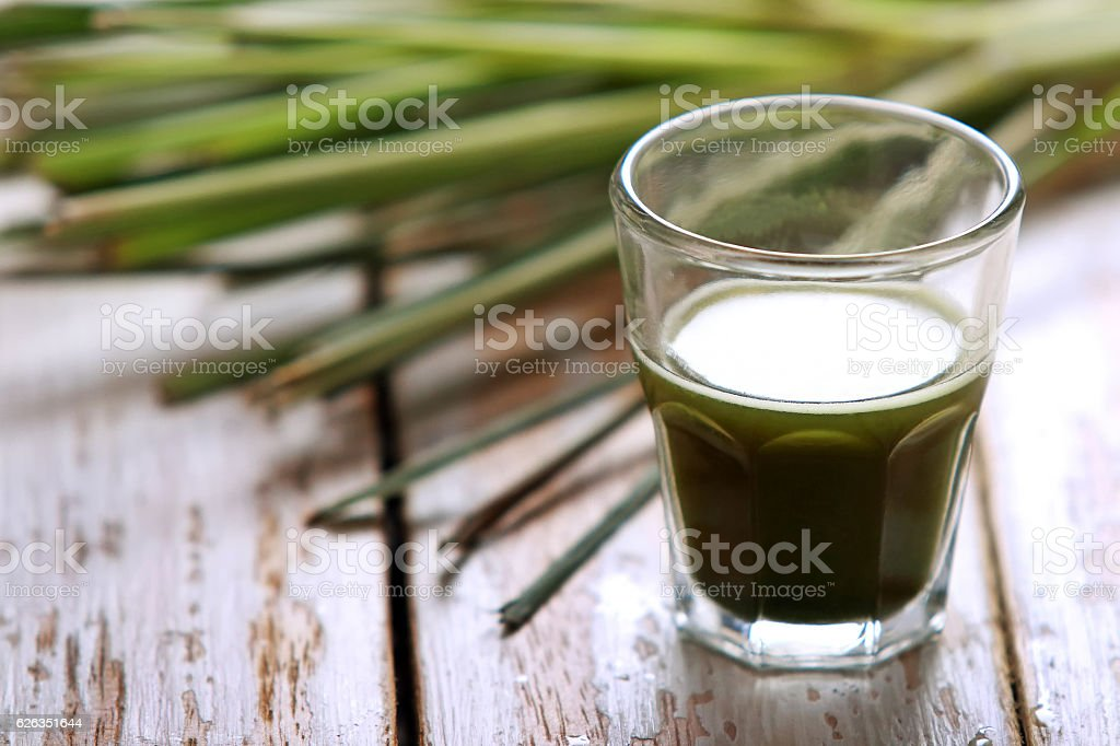 shot glass of wheatgrass stock photo