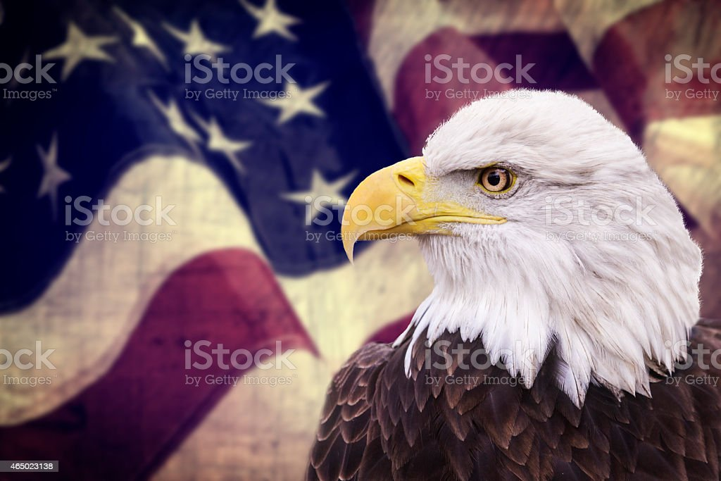 Shot of a bald eagle against a backdrop of the US flag stock photo