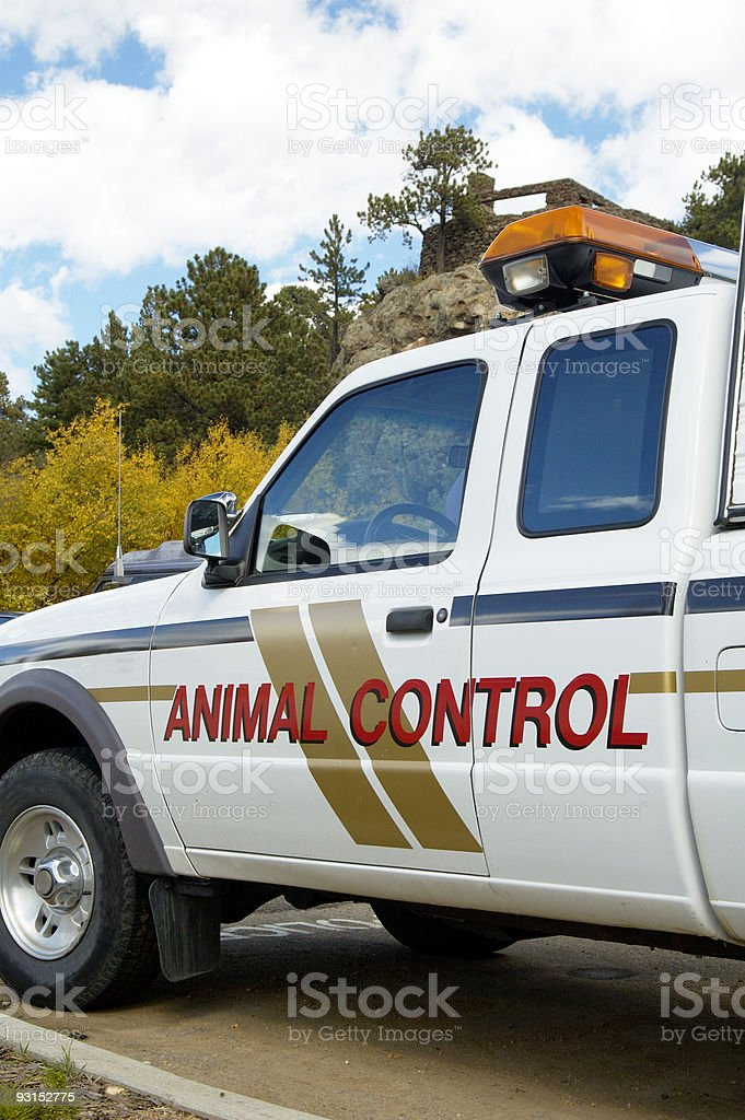 A shot of an animal control vehicle stock photo