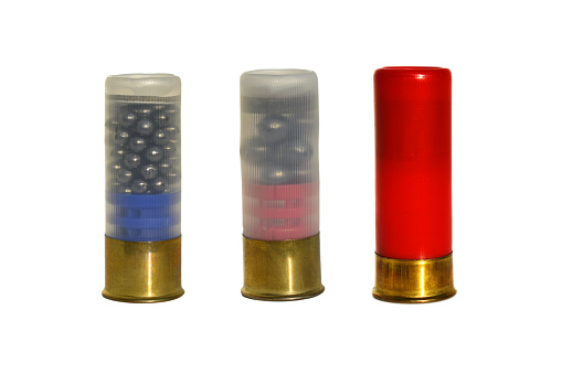 Shotgun bullet size 12