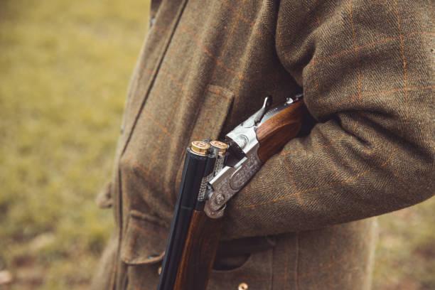 shotgun öppen över hunter underarmen - rovdjur bildbanksfoton och bilder