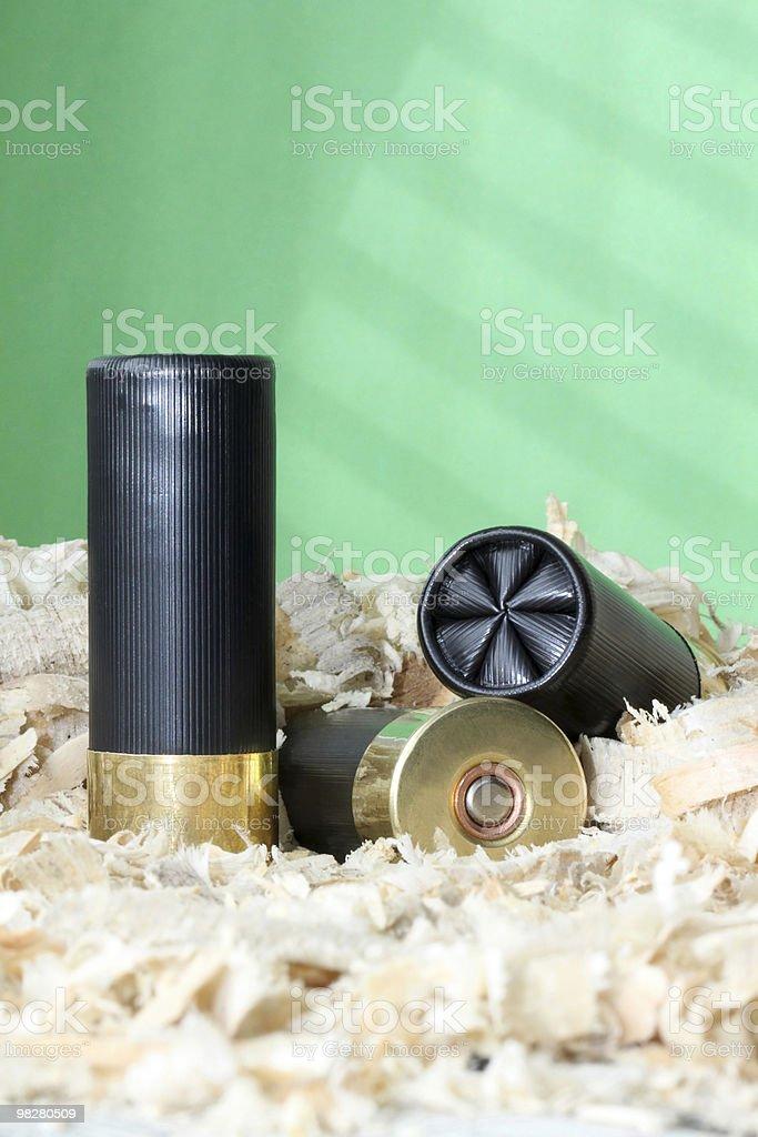 Shotgun Shell royalty-free stock photo