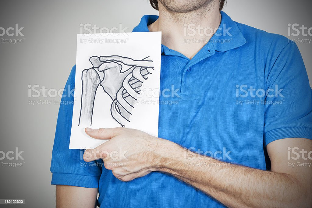 Shoulder bone stock photo