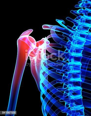 istock Shoulder painful skeleton x-ray, 3D illustration. 541567530