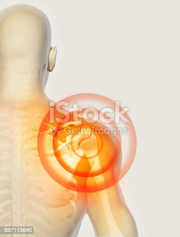 istock Shoulder painful skeleton x-ray, 3D illustration. 637113640