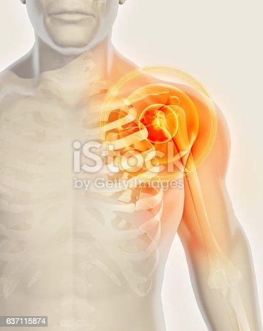 istock Shoulder painful skeleton x-ray, 3D illustration. 637115874