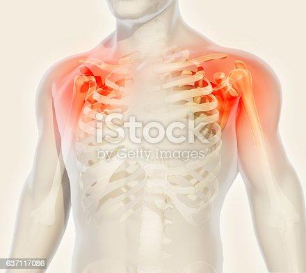 istock Shoulder painful skeleton x-ray, 3D illustration. 637117086