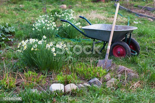 istock Shovel and the cart on a garden site 1013452490
