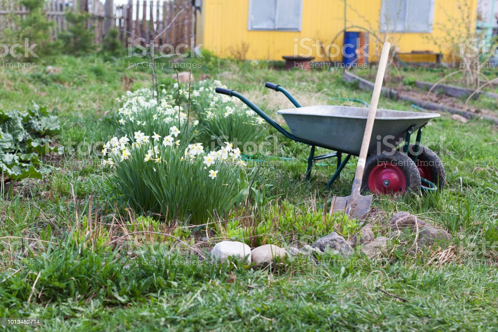 Shovel and the cart on a garden site стоковое фото