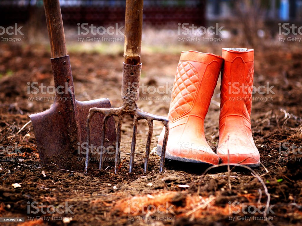 pala, botas de goma de pitchfork y naranja en el suelo en el jardín de primavera, profundidad de campo, entonado, lomography - Foto de stock de Agricultura libre de derechos